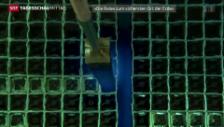 Video «Kein Endlager für den Atomabfall» abspielen