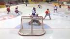 Video «Eishockey: Schweiz - Slowakei» abspielen