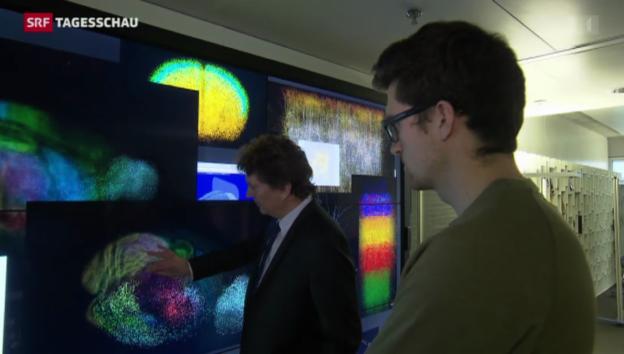 Video «Schweiz weiterhin bei «Horizon 2020» dabei» abspielen