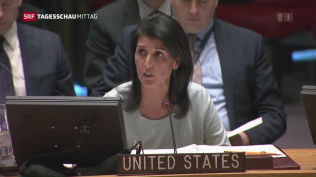 Video «USA zum Konflikt Russland-Ukraine» abspielen