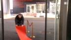 Video «Mike & Viktor und der rote Teppich» abspielen