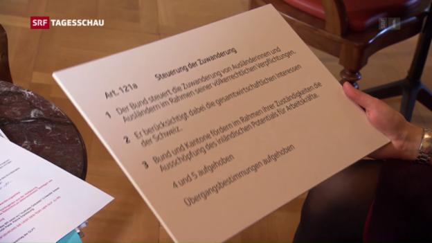 Video ««Die Vorschläge des Bundesrates sind ein Gebastel»» abspielen