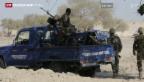 Video «Soldaten aus Niger im Kampf gegen Boko Haram» abspielen