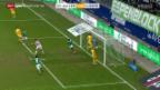 Video «Super League: St. Gallen - Luzern» abspielen
