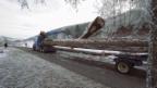 Video «1. Highlight: Holzführen mit Martin Wittwer» abspielen