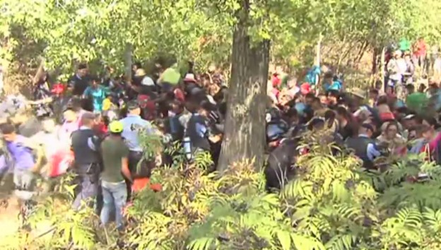Video «Flüchtlinge durchbrechen Absperrung in Kroatien (unkommentiert)» abspielen