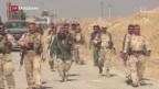 Video «Suche nach Perspektiven für Mossul» abspielen