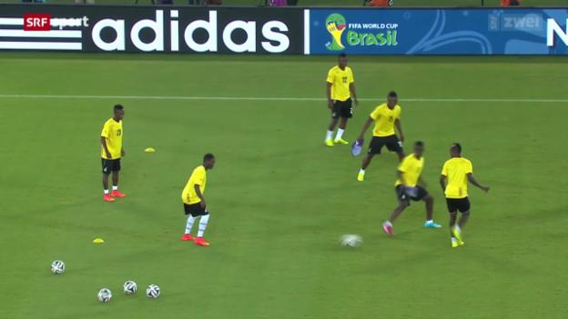 Video «Ghana - USA zum Dritten» abspielen