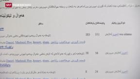Video «Al-Kaida in Basel: Brüder müssen ins Gefängnis» abspielen