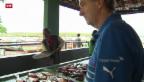 Video «WM: Ausflug mit Nati-Koch Emil Bolli» abspielen