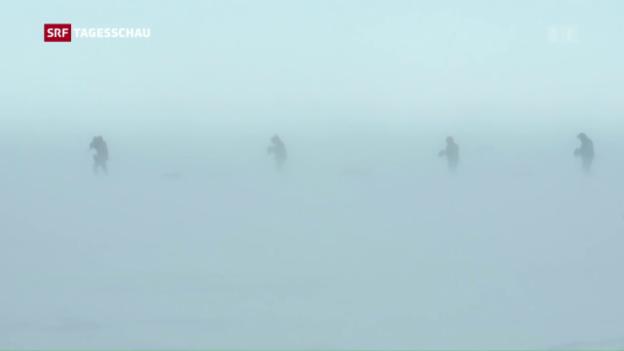 Video «Expedition um die Antarktis» abspielen