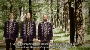 Video «Eurovision Song Contest: Wikinger, Freaks und schräge Vögel» abspielen