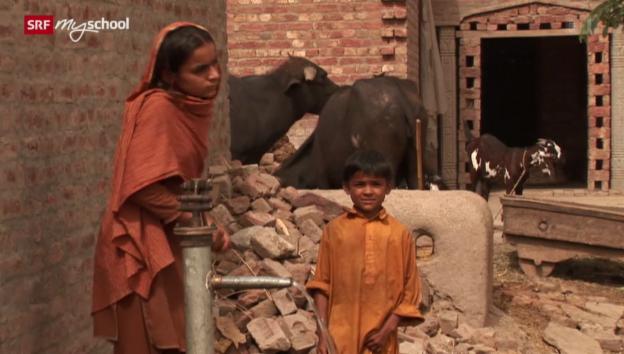 Video «Die unbarmherzigen Samariter» abspielen