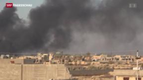 Video «Erfolg gegen den IS » abspielen