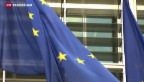 Video «Kommt es zum Kompromiss mit der EU?» abspielen