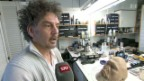 Video ««Schweizer» Masken für die Schauspielgrösse Jeff Bridges» abspielen