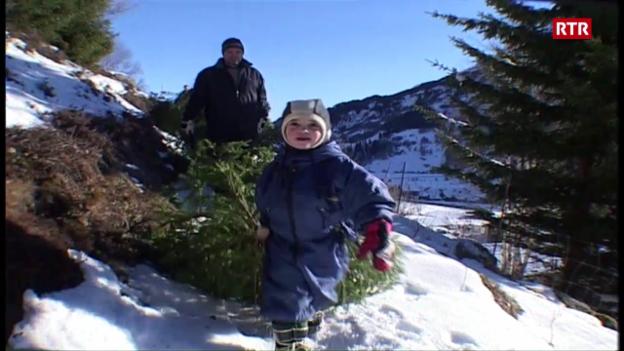 Laschar ir video «Resgiar gratuit l'agen pignol a Mustér (Telesguard dals 22.12.2003))»