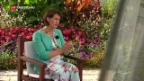 Video «Doris Leuthard geht spätestens 2019» abspielen