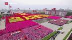 Video «Nordkorea zelebriert seinen Machthaber» abspielen