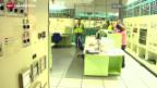 Video «Zwischenfall im AKW Fessenheim vertuscht» abspielen