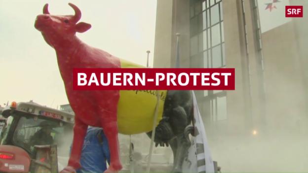 Video «Bauern überschütten EU-Gebäude mit Milchpulver» abspielen