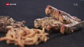 Video «Insekten – neu auch im Migros-Regal» abspielen