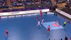 Video «GC-Unihockeyaner sind erstmals Meister» abspielen