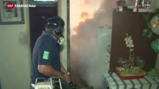 Video «Reisewarnungen wegen Zika-Virus» abspielen