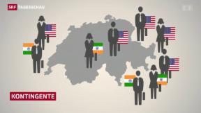 Video «Die Masseneinwanderungsinitiative im Bundesrat» abspielen