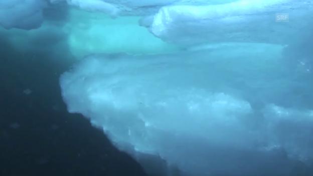 Video «Die Aufnahmen des Eisroboters» abspielen