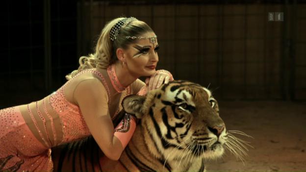 Video «Wild Women - Gentle Beasts» abspielen