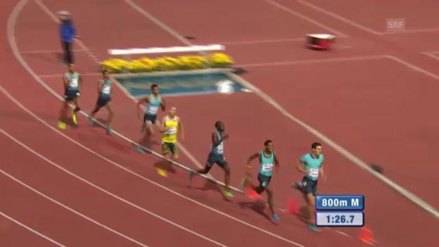 Video «800 m Männer» abspielen