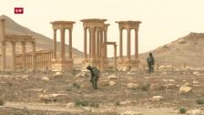 Video «Russland räumt Palmyra auf» abspielen