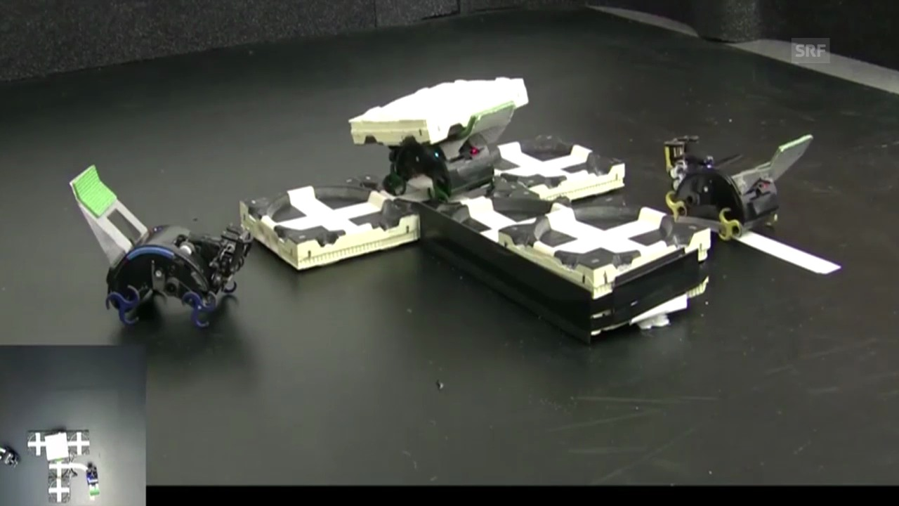 Teamarbeit unter Robotern (Science/AAAS)