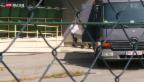 Video «FOKUS: Schlepper gefasst» abspielen