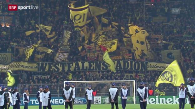 Video «Fussball: CL, Dortmund - Napoli («sportlive»)» abspielen