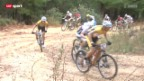 Video «Mountainbike: Cape Epic in Südafrika» abspielen