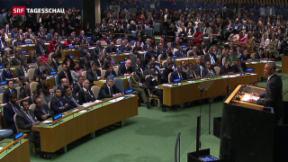 Video «Ein Syrien mit oder ohne Assad?» abspielen