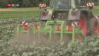 Video «FOKUS: Bauern setzen sich gegen Agrarpläne des Bundesrats durch» abspielen