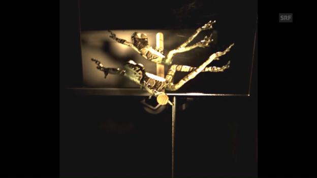 Video «Frosch-Sprung in Zeitlupe» abspielen
