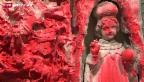 Video ««Sie drückt so ihre Wut aus»» abspielen