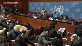 Video «Kleiner Fortschritt an der Syrien-Friedens-Konferenz in Genf» abspielen