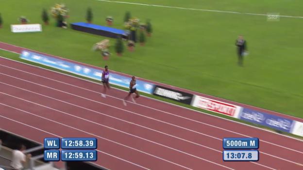 Video «Leichtathletik: Athletissima Lausanne, 5000 Meter Männer» abspielen