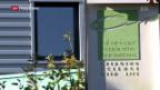 Video «Novartis investiert in Krebsbekämpfung» abspielen