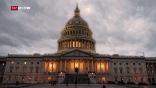 Video «Der Shutdown ist zu Ende» abspielen
