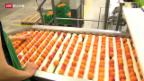 Video «Weniger Rosinenpicken beim Früchtehandel» abspielen