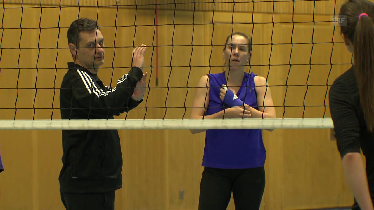 Trainer Terzic verlässt Volero