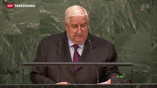 Video «Syrischer Aussenminister fordert «nationalen Dialog»» abspielen