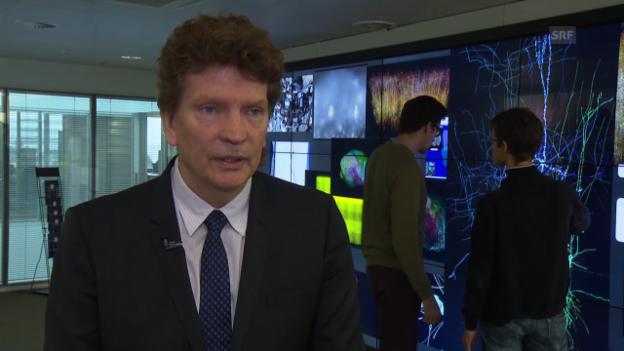 Video «Human-Brain-Project-Direktor über das Szenario fehlender Gelder» abspielen