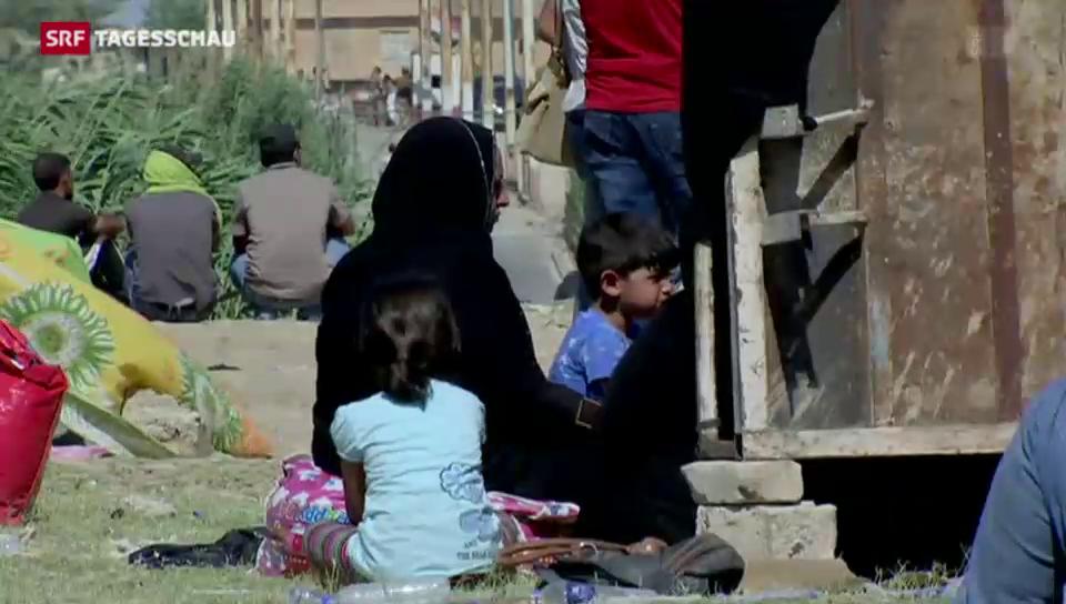 Hunderte Iraker flüchten aus Ramadi